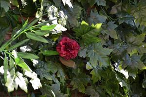 צמחים מלאכותיים לגינה